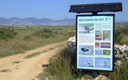 Ornitološki rezervati i ljekovita blata 02