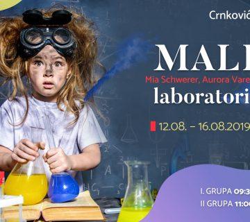 Mali laboratorij